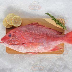 ماهی چمن2